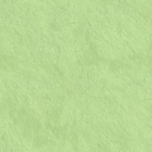 Background-Light-Green-300x300